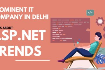 .net Services in Delhi