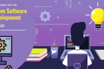 software-development-company-in-delhi